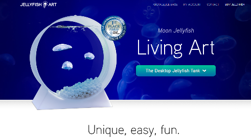 Alex andon founder president jellyfish art for Can i have a jellyfish as a pet